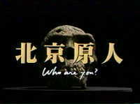 """""""インテリ女優""""村井美樹が4歳年上の会社員と結婚「毎日が新鮮で楽しい」"""