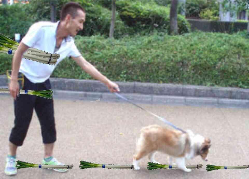 【ネタトピ】ネギをスタイリッシュに持って帰る方法は?