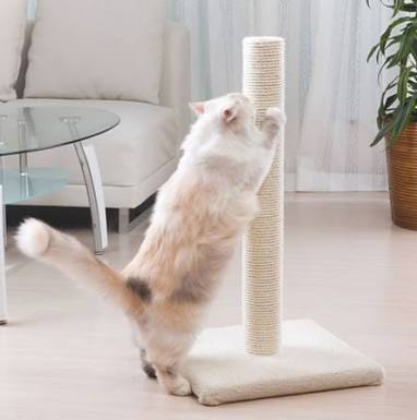 猫の爪とぎのおすすめを教えて下さい!