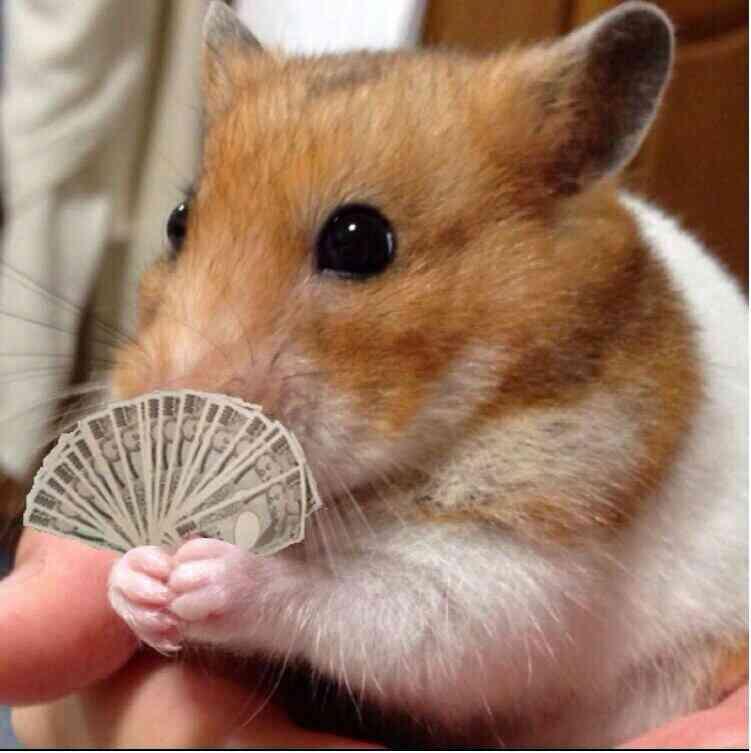 動物の画像にセリフを付けるトピ