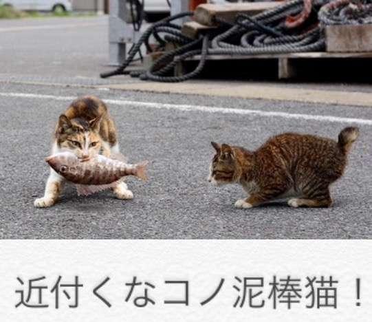 ベッキーがナイナイ岡村隆史に衝撃の告白 「彩がオカムーと私を…」