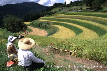 茶碗に残ったたくさんの米粒を許せる?Twitter上で議論勃発