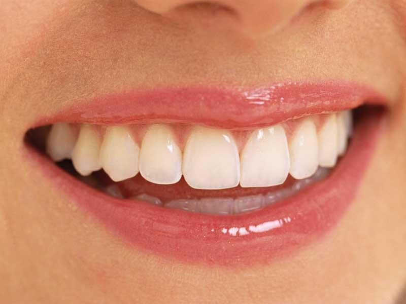 歯の大切さを語ろう