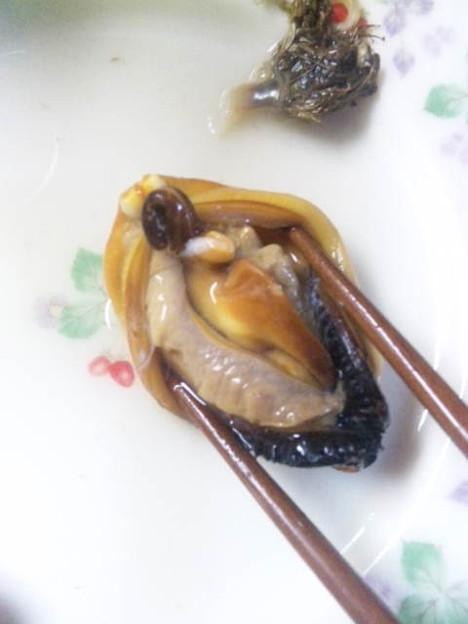 貝類が好きな人~