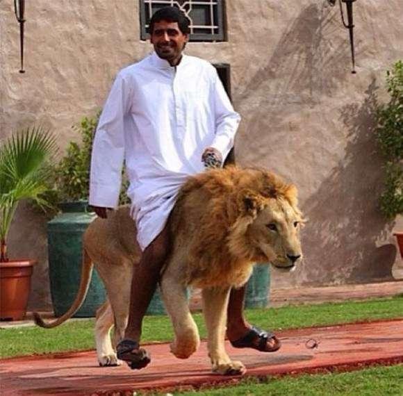 アラブの石油王と結婚する方法を考えるトピ