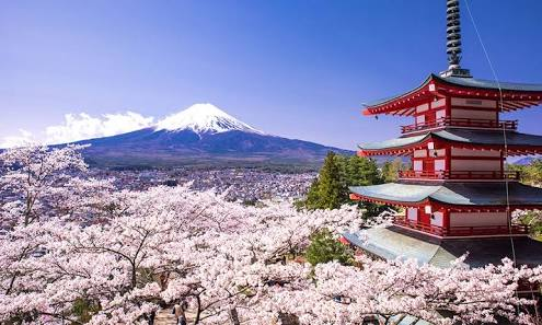 日本は外国からどう思われてるのでしょうか?