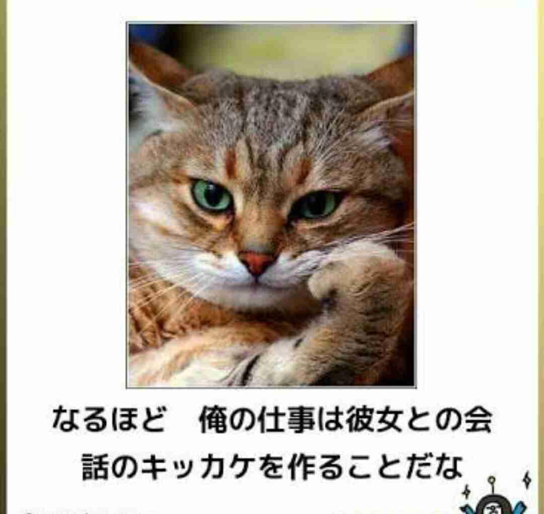 【雑談】恋愛・結婚【相談】