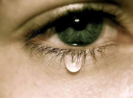 泣きたい人が集まるトピ