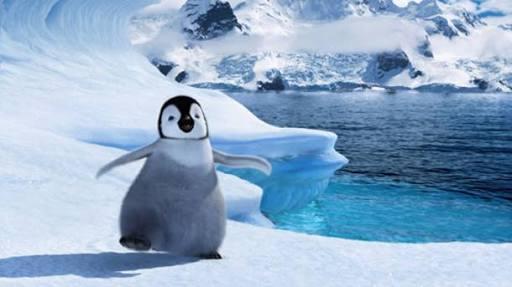 ペンギン「ほぇ~このペンギンすっごい大きい」 ペンギンのリアルな12日の日常