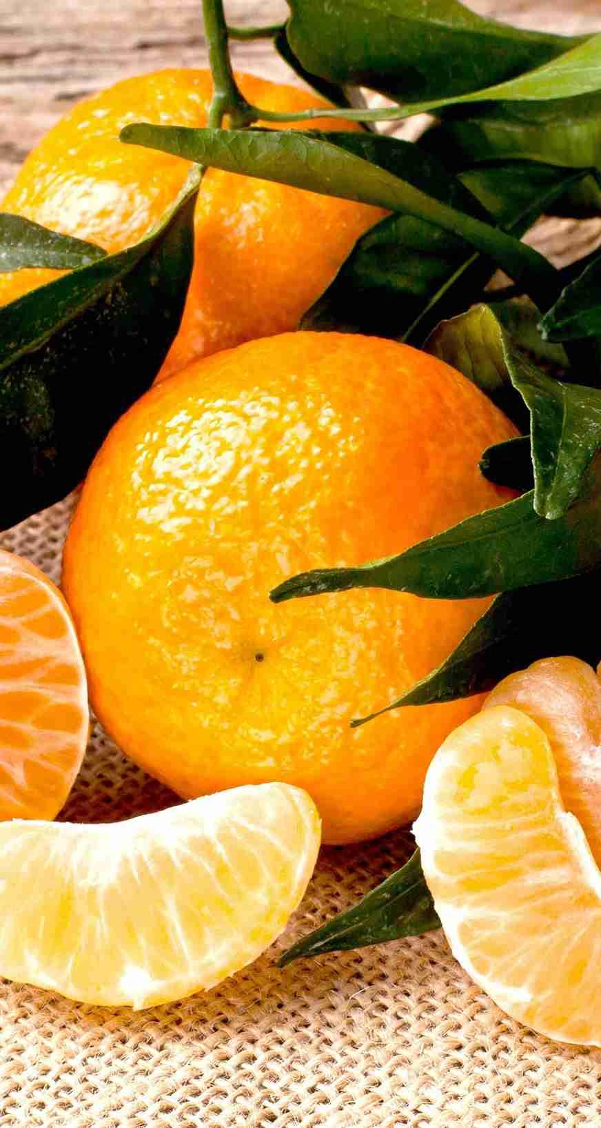 柑橘系が好きだー!