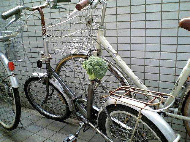 自転車の交通違反