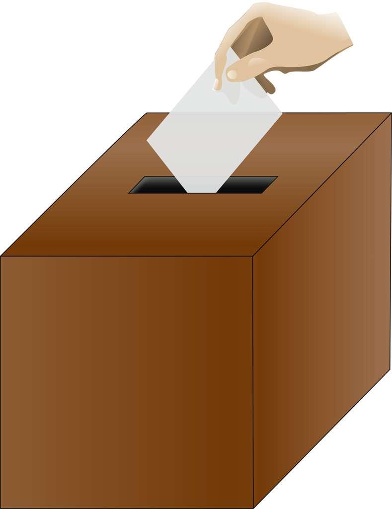 議会制でなく国民投票だったら