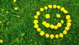 1番幸せな生き方・人生ってどんなのだと思いますか?
