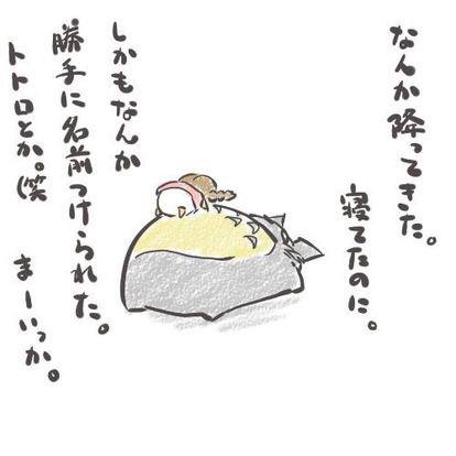 疲れた人が集まる癒しのトピ