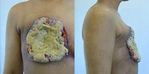 布をクンクン、乳がん検知 犬使った画期的診断法、仏で発表