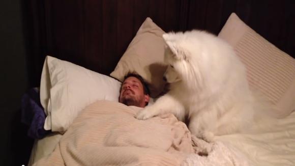 【眠い人限定】何かしら書き込んでさっさと寝るトピ