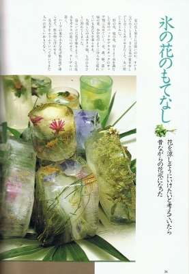 雑草について語りたい【2017春】