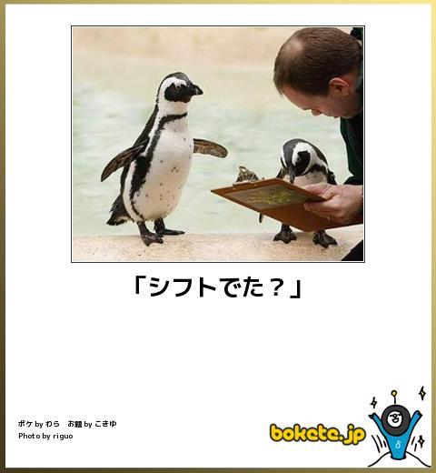 仕事中の動物を貼るトピ