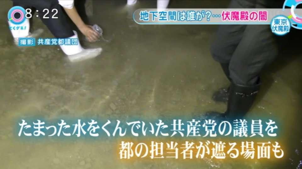 """豊洲問題 """"都の指示""""調査に使わない地下水を分析"""