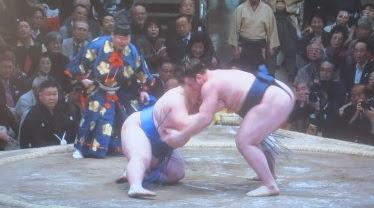 照ノ富士への「モンゴル帰れ」に広がる波紋 相撲協会の対応は?