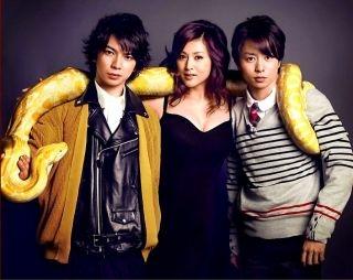 【閲覧注意】全長7mのニシキヘビの腹から成人男性の遺体発見 インドネシア
