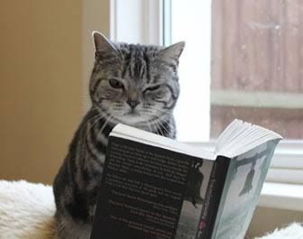 読書家になったキッカケを教えて下さい