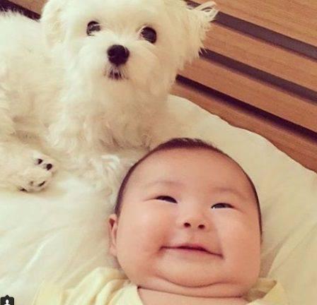 赤ちゃんを見せられたらなんて言いますか?