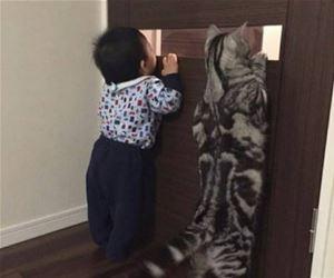 動物の画像にセリフをつけるトピ