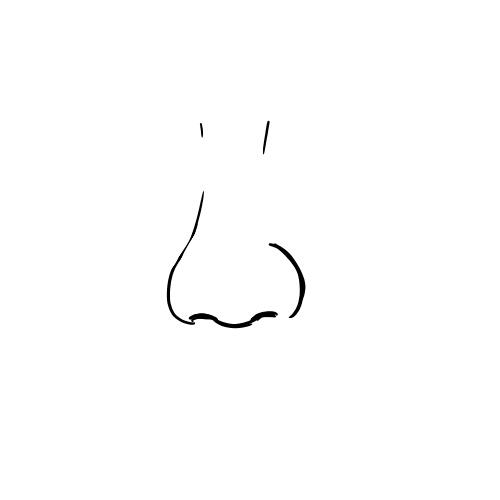 正面から見た自分の鼻を描くトピになります