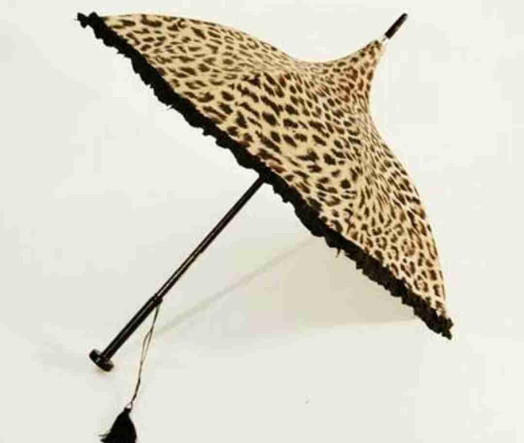 日傘はいつ頃からさしますか?