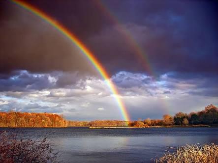 色んな虹の画像が見たいです
