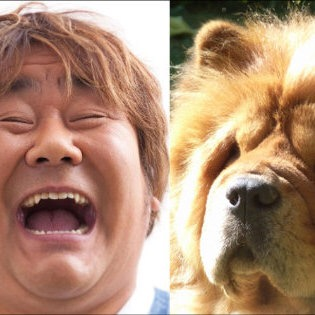 犬っぽい芸能人の画像を貼るトピ