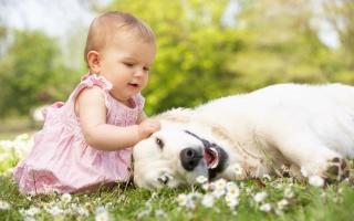 赤ちゃんがいる家庭の衛生対策