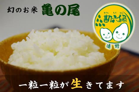好きなお米の銘柄はなんですか?