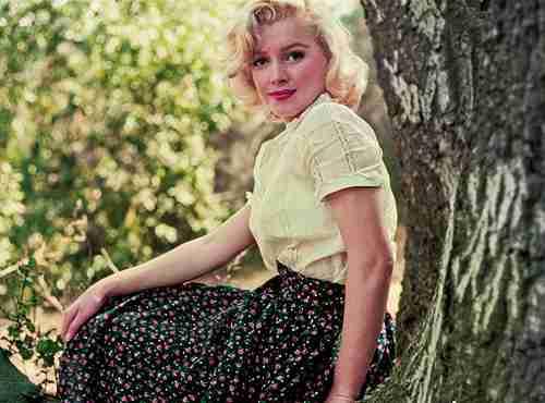 自分の中で今一番可愛いと思ってる女性有名人