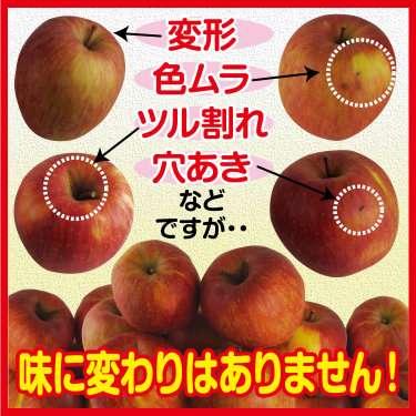 若者のリンゴ消費低迷…29歳以下の年間リンゴ購入数、70歳以上の10分の1以下に/総務省家計調査