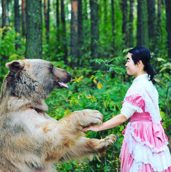 山菜採りの男性 クマに襲われけが 足で蹴って撃退 青森