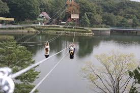 栃木で行ったほうがいいところ!