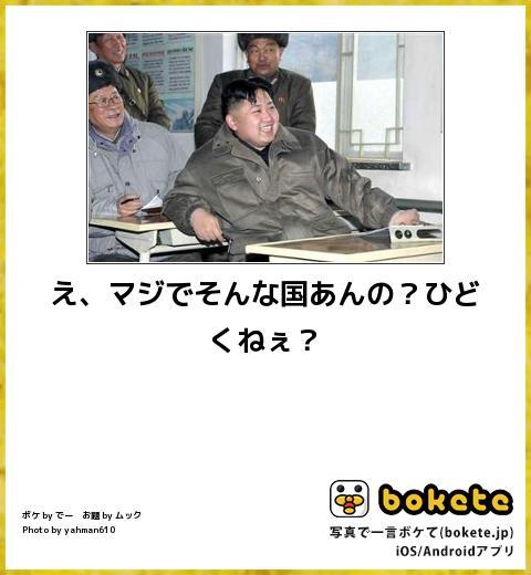 チベットスナギツネの笑顔を取り戻すトピ part1