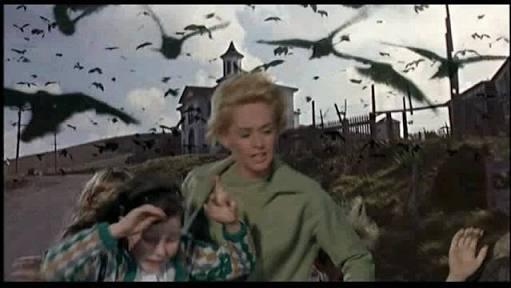 ハトが怖いという方