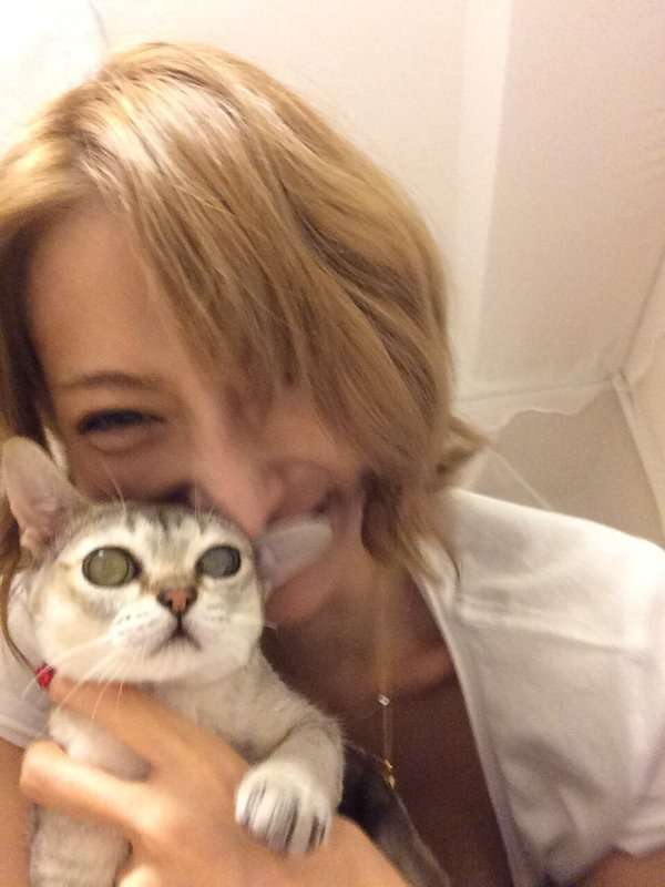 加藤紗里、飼い猫を「ハンドバッグ」で持ち運ぶ  「虐待」批判殺到