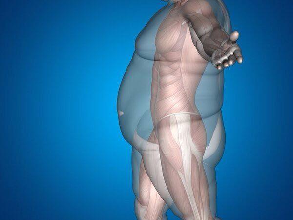 体脂肪率落としたい人集合!