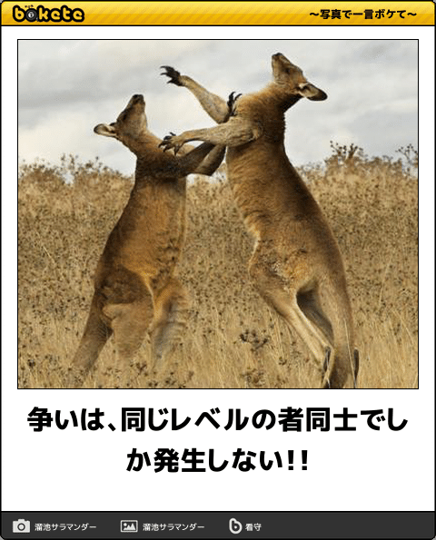 ハライチ岩井勇気 Twitterでアイドルファンから反感を買い炎上