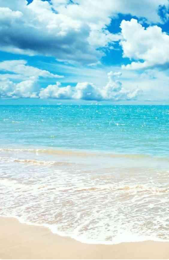 夏休みの予定は決まってますか?