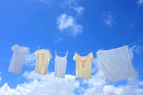 洗濯って着る度してますか?