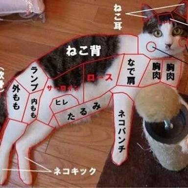 【自由】三連休前夜祭★