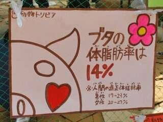 【画像】渡辺直美で溢れるトピ