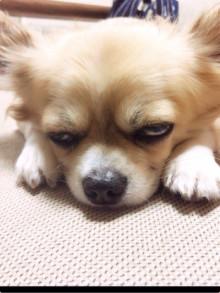 眠くてたまらない