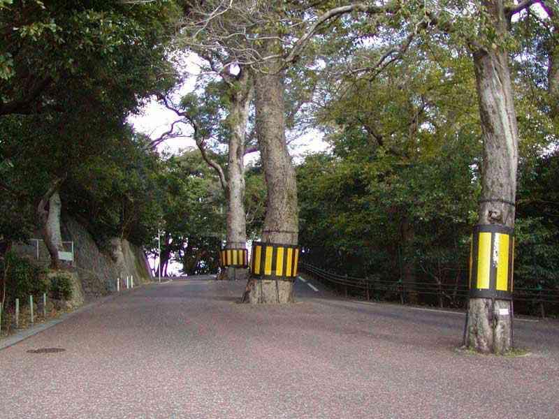 長崎旅行のおすすめはどこ?