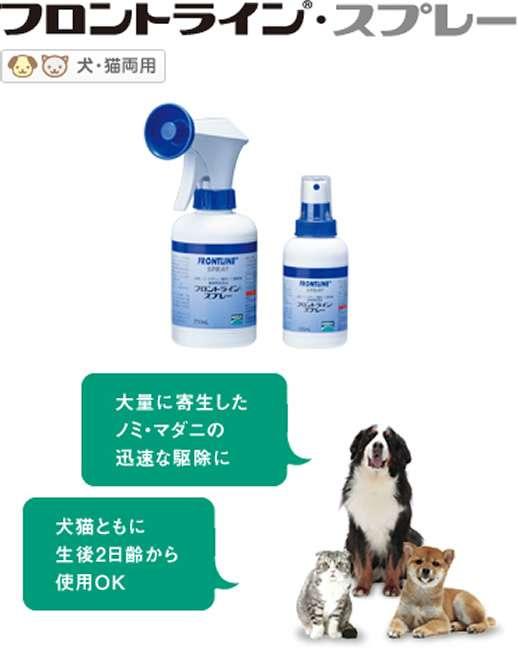 ペットの虫除け対策